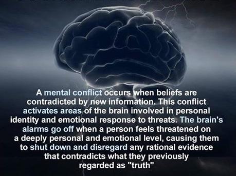 Cognitive-Dissonance.jpg